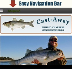 Fishing Charter website view on a mobile phone